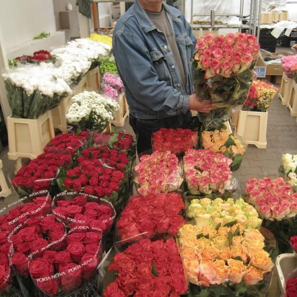 stanowisko na Giełdzie Kwiatowej w Krakowie